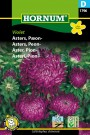 Asters, Peon- 'Violet' (Callistephus chinensis) thumbnail