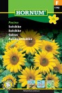 Solsikke 'Pacino' (Helianthus annuus) thumbnail